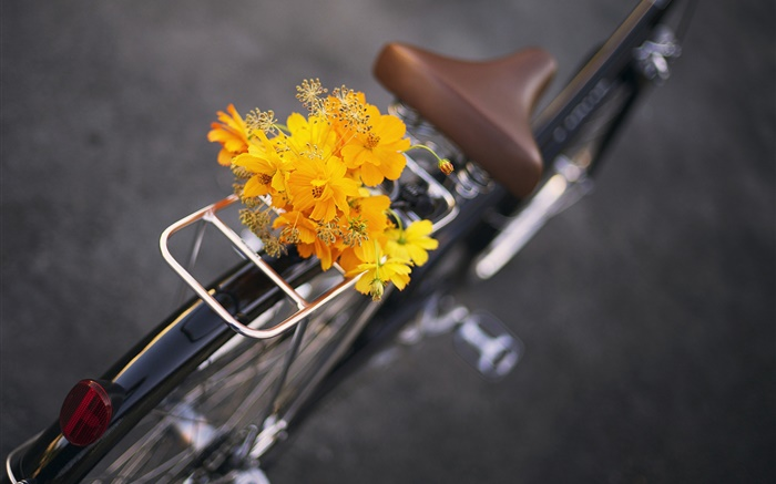 Bike, yellow flowers, bouquet Wallpapers Pictures Photos Images