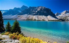 Bow Lake, Alberta, Canada, mountains, trees, blue sky HD wallpaper