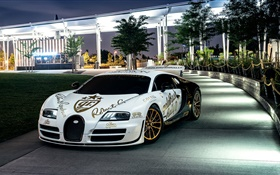 Bugatti Veyron white supercar, New York, trees, night, lights HD wallpaper