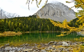 Chester Lake, Canadian Rockies, Alberta, Canada, lake, mountains, forest HD wallpaper