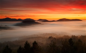 Dawn, mountains, forest, clouds, red sky, fog
