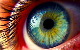 Eyes close-up, eyelashes HD wallpaper
