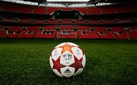 Football, Champions League, grass field, stadium, Wembley HD wallpaper