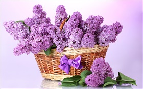 Purple lilac flowers, basket HD wallpaper