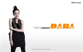 2NE1, Korean music girls 13 HD wallpaper
