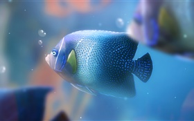 Blue aquarium fish close-up HD wallpaper