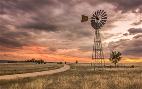 New South Wales, Australia, grass, windmill, clouds, sunset HD wallpaper