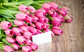 Pink tulips, bouquet flowers