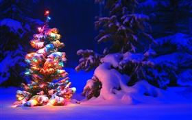 Snow, lights, tree, winter, night, Christmas HD wallpaper