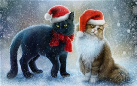 Two cats, snow, scarf, Christmas hat HD wallpaper