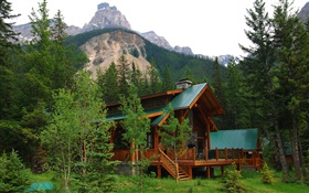 Alberta, Canada, villa, house, forest, trees, mountains