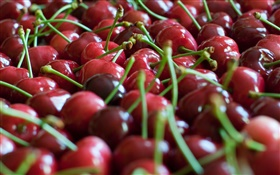 Many red cherries HD wallpaper