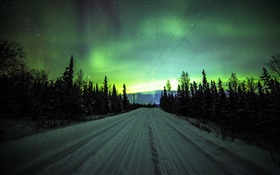 Northern lights, road, pine trees, stars HD wallpaper