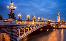 Paris, France, evening, lights, bridge HD wallpaper