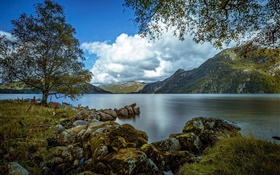 Rogaland, Norway, lake, mountains, tree, rocks, clouds HD wallpaper