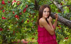 Blue eyes girl, red dress, apple tree, red apples HD wallpaper