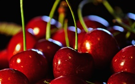Cherries close-up, red tempter