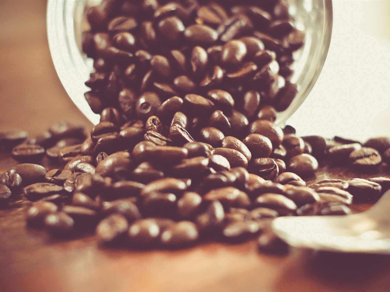 Coffee beans, spoon, drink, glass cup 1600x1200 wallpaper