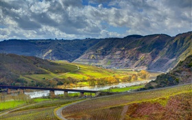 Ediger-Eller, germany, mountains, river, bridge, vineyard HD wallpaper