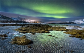 Norway, northern lights, night, stars, sea, coast, winter, snow