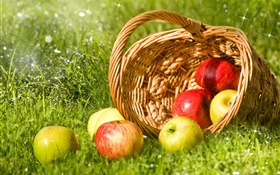 Red and green apples, fruit, basket, grass HD wallpaper