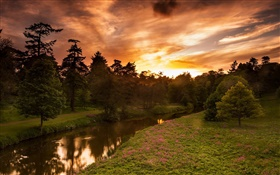 Sunset, river, trees, summer, red sky HD wallpaper