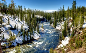 Yellowstone National Park, USA, forest, trees, river, snow, winter HD wallpaper