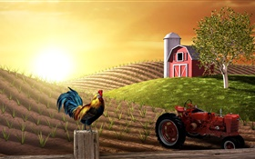 3D pictures, farm, field, tractor, cock, house, sun HD wallpaper