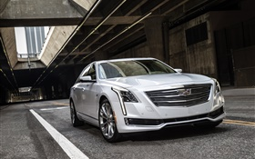 Cadillac CT6 white car front view HD wallpaper