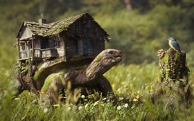 Creative pictures, turtle, house, flowers, grass, stump, bird HD wallpaper