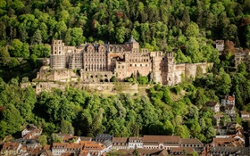 Germany, Heidelberg Castle, trees, houses