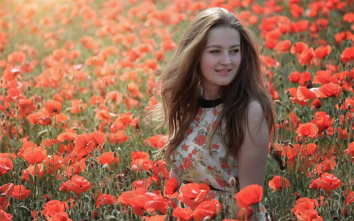 Girl in the flowers field, red poppies, summer Wallpapers Pictures Photos Images