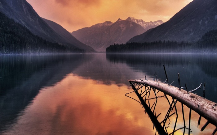 Lake, branches, mountains, dusk Wallpapers Pictures Photos Images