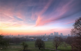 London, England, Greenwich park, houses, dawn HD wallpaper