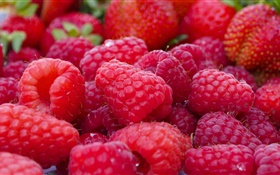 Many red raspberries, fruit macro HD wallpaper