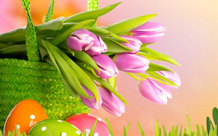 Purple tulips, flowers, basket, Easter, spring Wallpapers Pictures Photos Images
