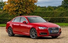 2015 Audi A4 sedan, red car HD wallpaper