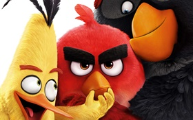 2016 Angry Birds HD wallpaper
