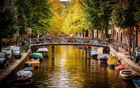 Amsterdam, Netherlands, bridge, river, boats, houses, trees, autumn HD wallpaper