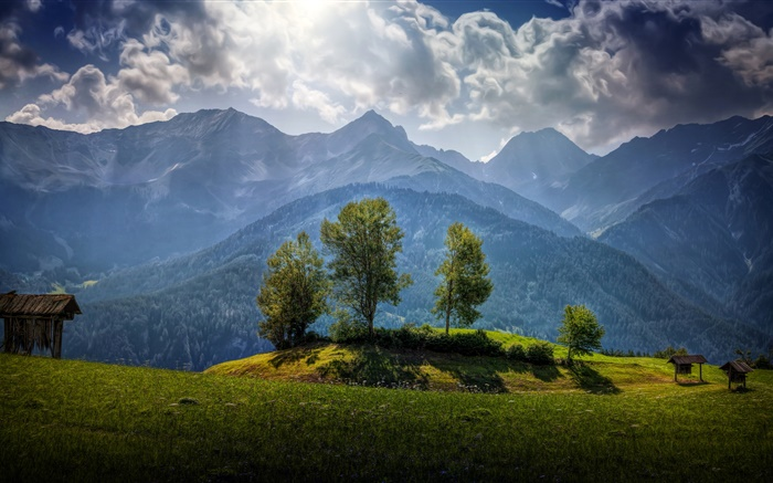 Austria, mountains, trees, clouds, grass Wallpapers Pictures Photos Images