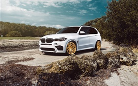 BMW X5M white SUV car HD wallpaper