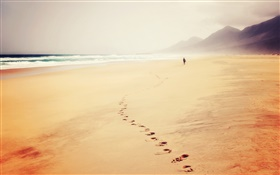 Beach, sea, traces, footprint, fog, people HD wallpaper