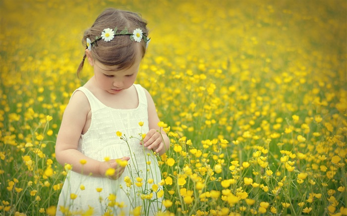 Cute girl child, canola flower field Wallpapers Pictures Photos Images