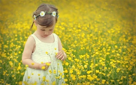 Cute girl child, canola flower field HD wallpaper