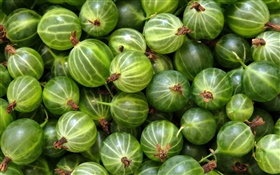 Green gooseberries HD wallpaper