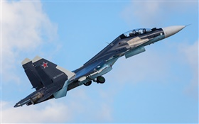Su-30CM multipurpose fighter HD wallpaper