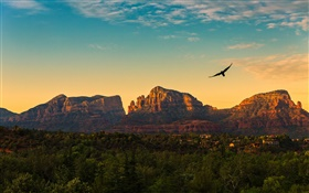 United States, Arizona, mountains, sunset, birds flying, village, dusk HD wallpaper