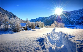 Winter, thick snow, trees, house, sun