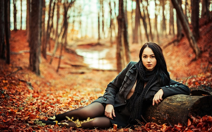 Black hair girl in the forest, autumn, yellow leaves Wallpapers Pictures Photos Images