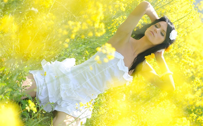 Canola flower field girl, white dress Wallpapers Pictures Photos Images